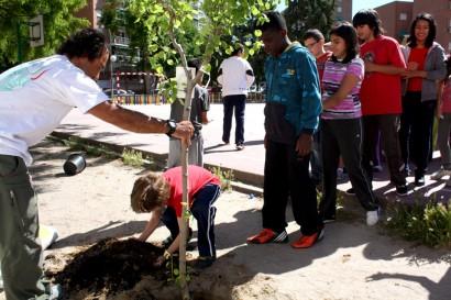 Planter un arbre pour protéger la planète