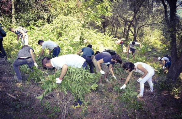 Communiqué de presse : Team Building solidaire TWAM-AMADEUS – 27 juin 2016 Nice